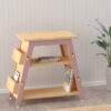 X&Y Book Display Shelf 2